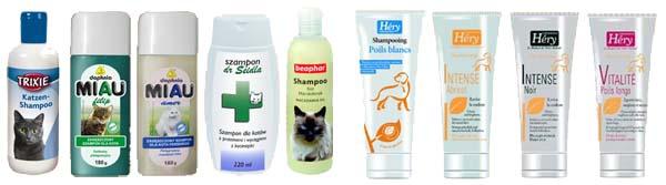 Zoolandia kot szampon