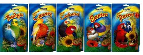 Zoolandia ptaki karma